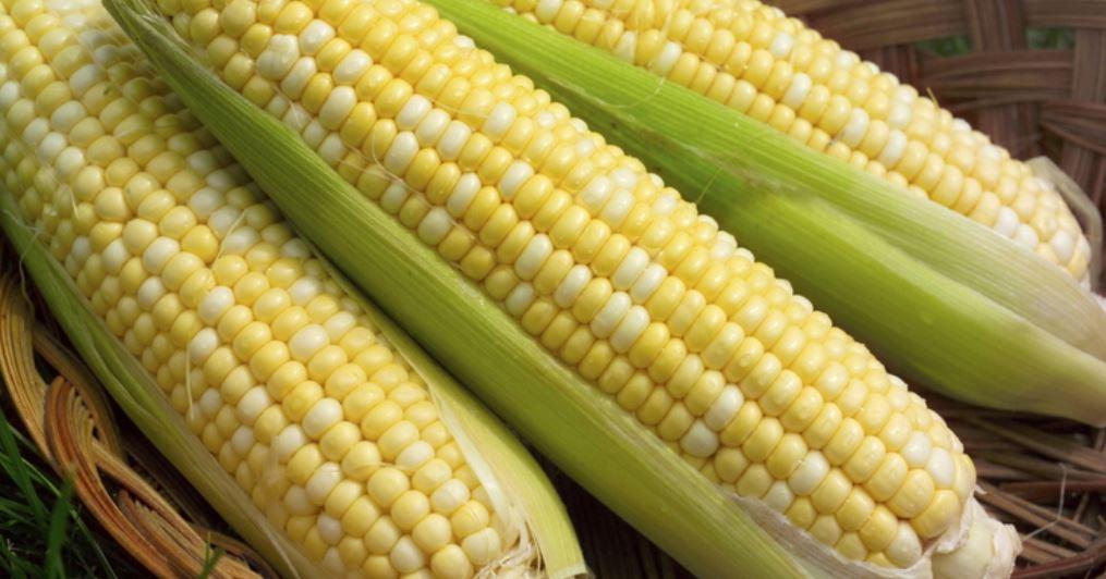 Dromen over maïs: Droom betekenis, Symbolen
