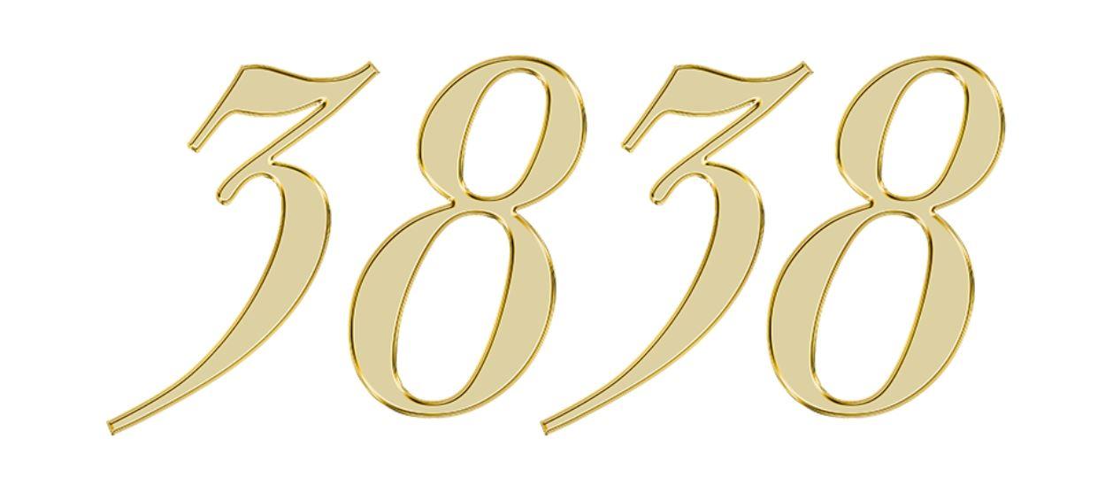 Numerologie 3838