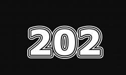 Engelengetal 202: interpretatie en betekenis