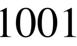 Engelengetal 1001: interpretatie en betekenis