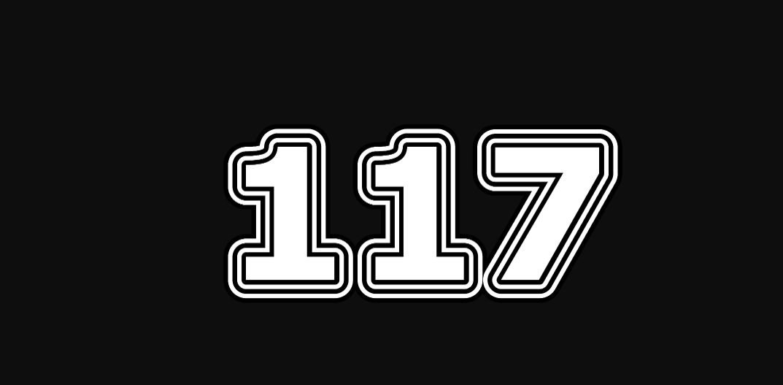 Numerologie 117