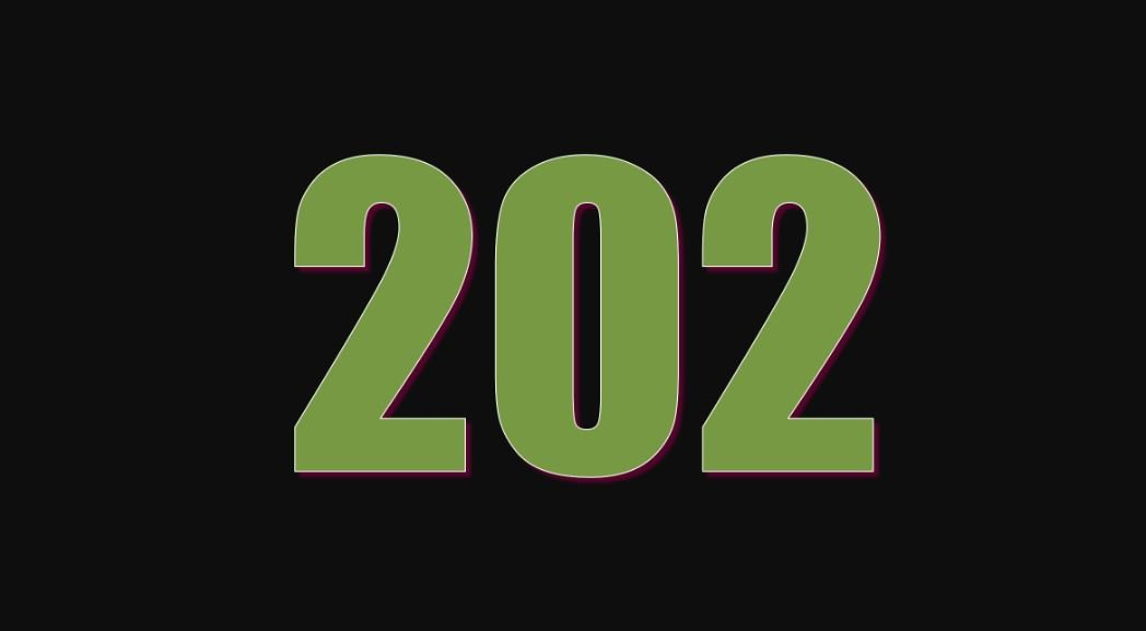 Numerologie 202