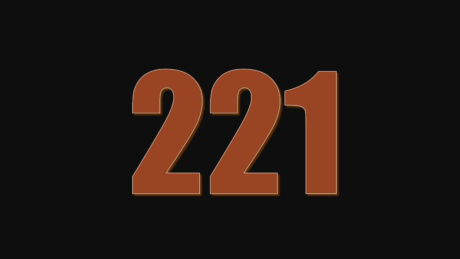 Numerologie 221