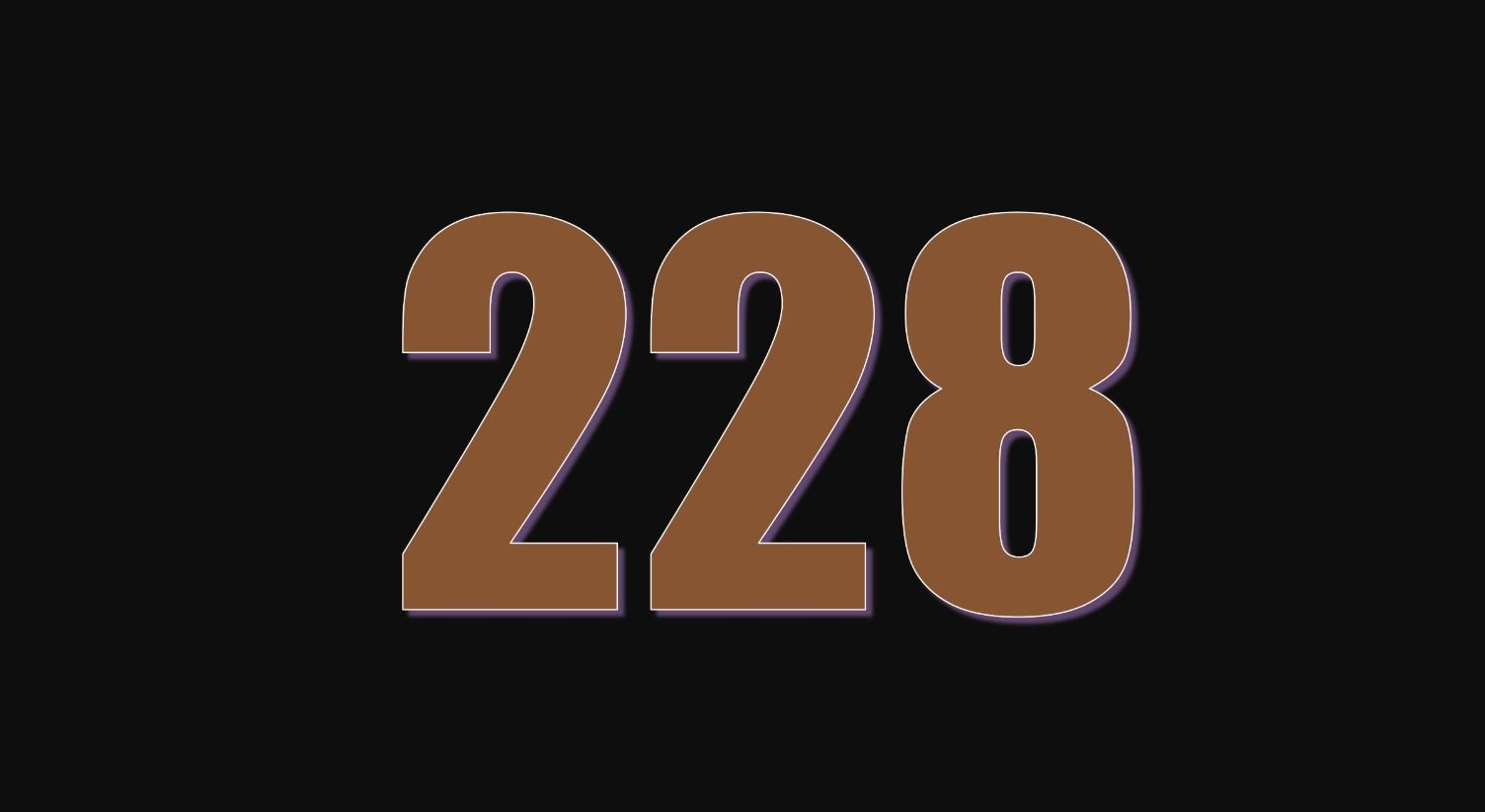 Numerologie 228