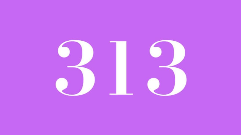 Numerologie 313
