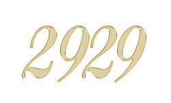Engelengetal 2929: Dubbele getallen interpretatie en betekenis