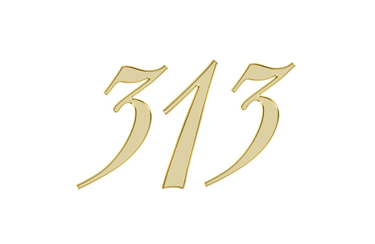 Engelengetal 313