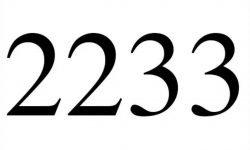 Engelengetal 2233: interpretatie en betekenis