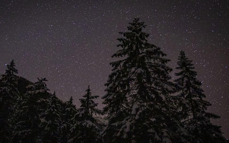 5 januari sterrenbeeld