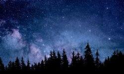 Horoscoop: 7 januari sterrenbeeld