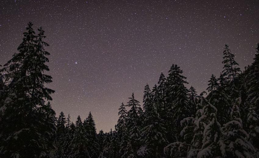 19 januari sterrenbeeld