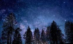 Horoscoop: 2 februari sterrenbeeld