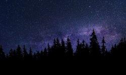 Horoscoop: 3 februari sterrenbeeld
