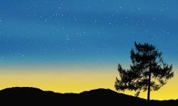 Horoscoop: 6 februari sterrenbeeld