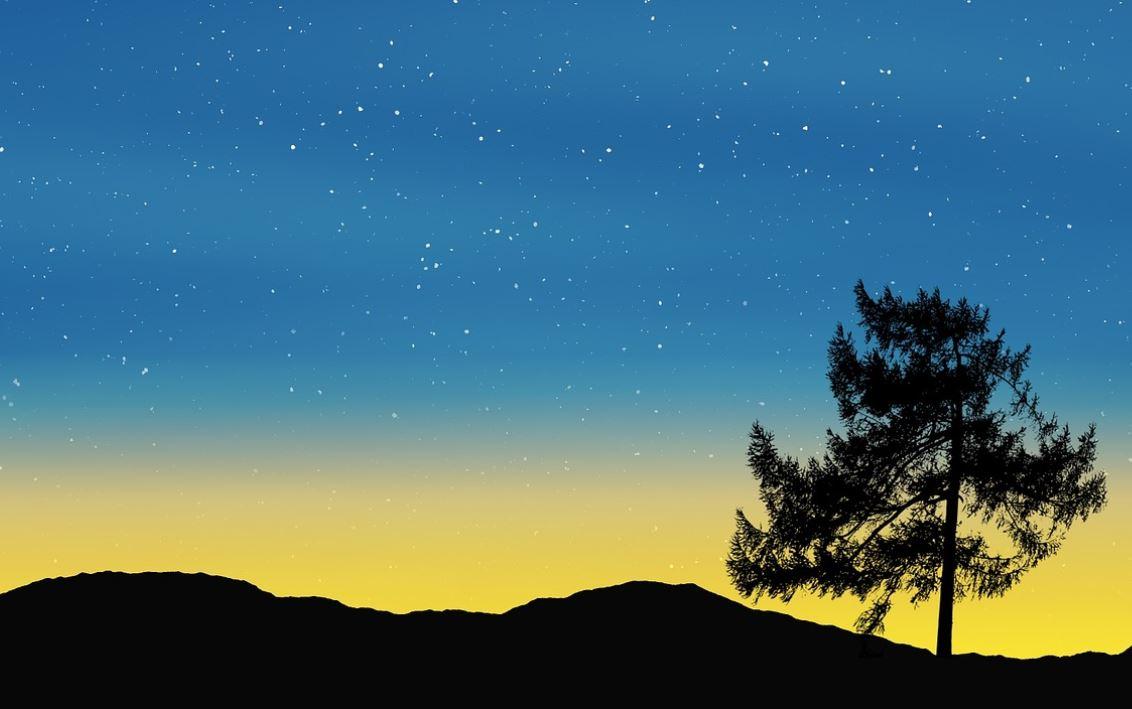 6 februari sterrenbeeld