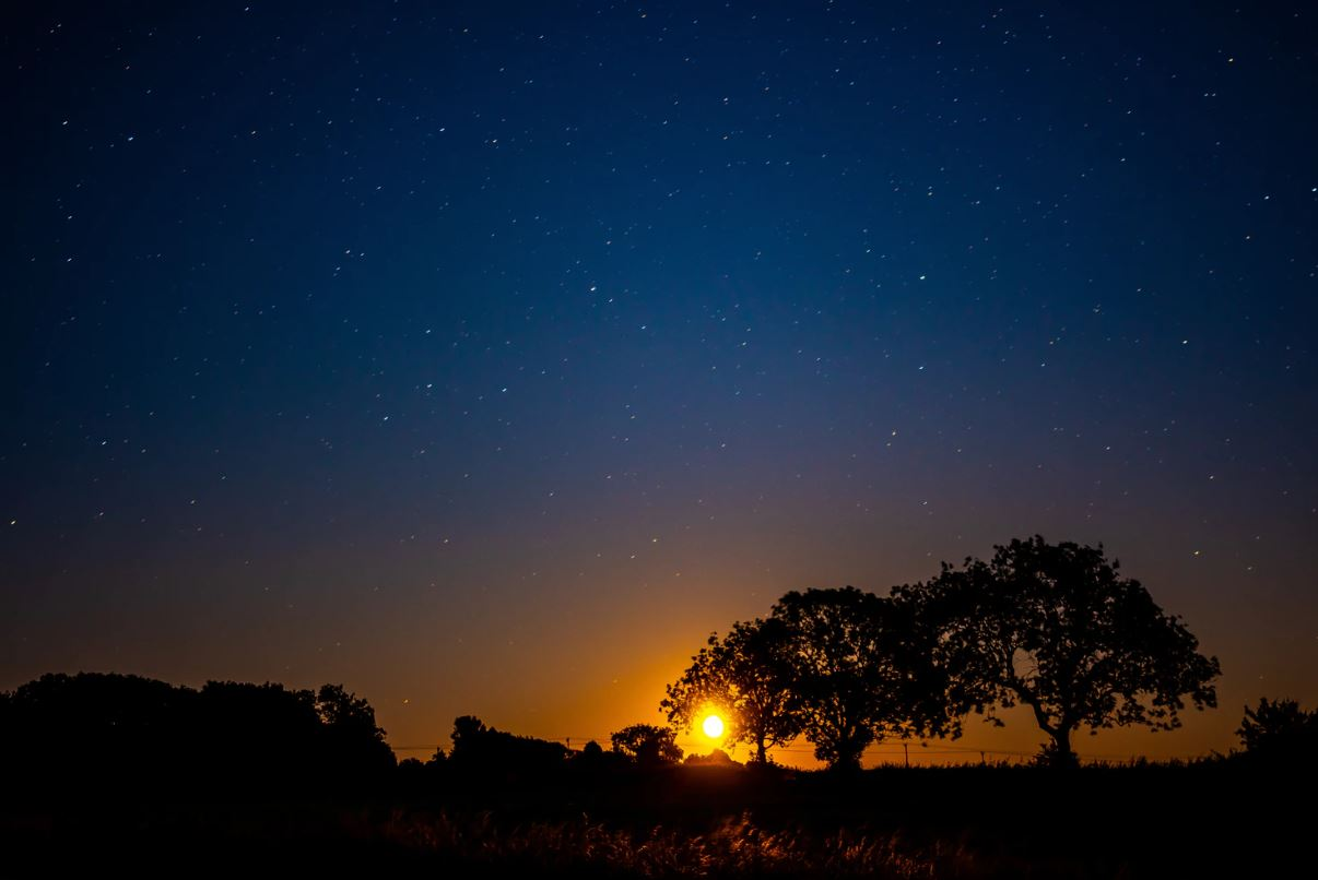 1 maart sterrenbeeld