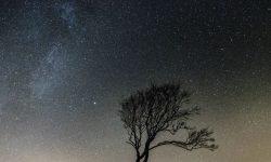 Horoscoop: 12 maart sterrenbeeld