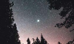 Horoscoop: 19 maart sterrenbeeld