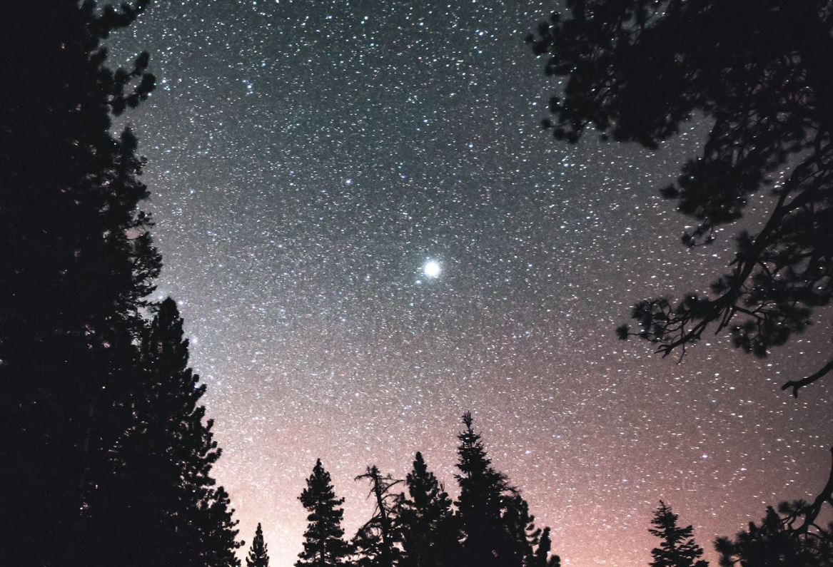 19 maart sterrenbeeld
