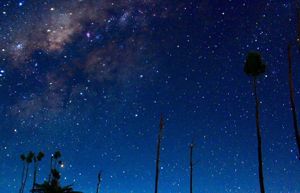 8 april sterrenbeeld