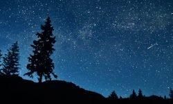 Horoscoop: 1 mei sterrenbeeld