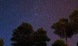 Horoscoop: 12 mei sterrenbeeld