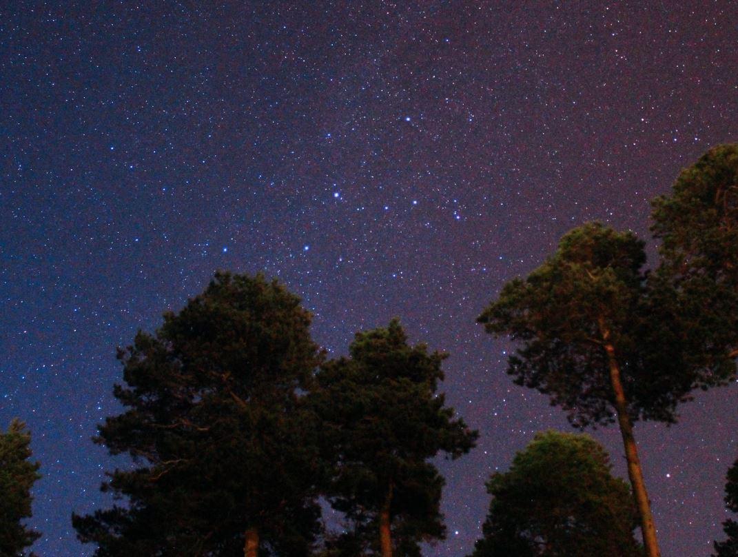 12 mei sterrenbeeld