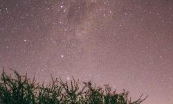 Horoscoop: 14 mei sterrenbeeld