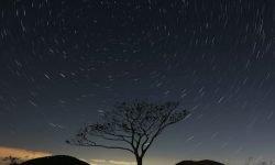 Horoscoop: 18 mei sterrenbeeld