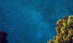 Horoscoop: 23 mei sterrenbeeld