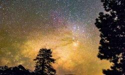 Horoscoop: 8 juni sterrenbeeld