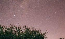 Horoscoop: 9 juni sterrenbeeld