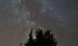 Horoscoop: 15 juni sterrenbeeld