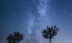 Horoscoop: 5 juli sterrenbeeld