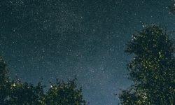 Horoscoop: 8 juli sterrenbeeld