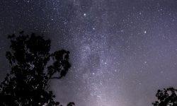 Horoscoop: 12 juli sterrenbeeld