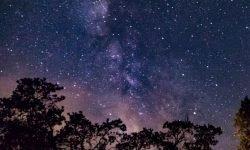 Horoscoop: 15 juli sterrenbeeld