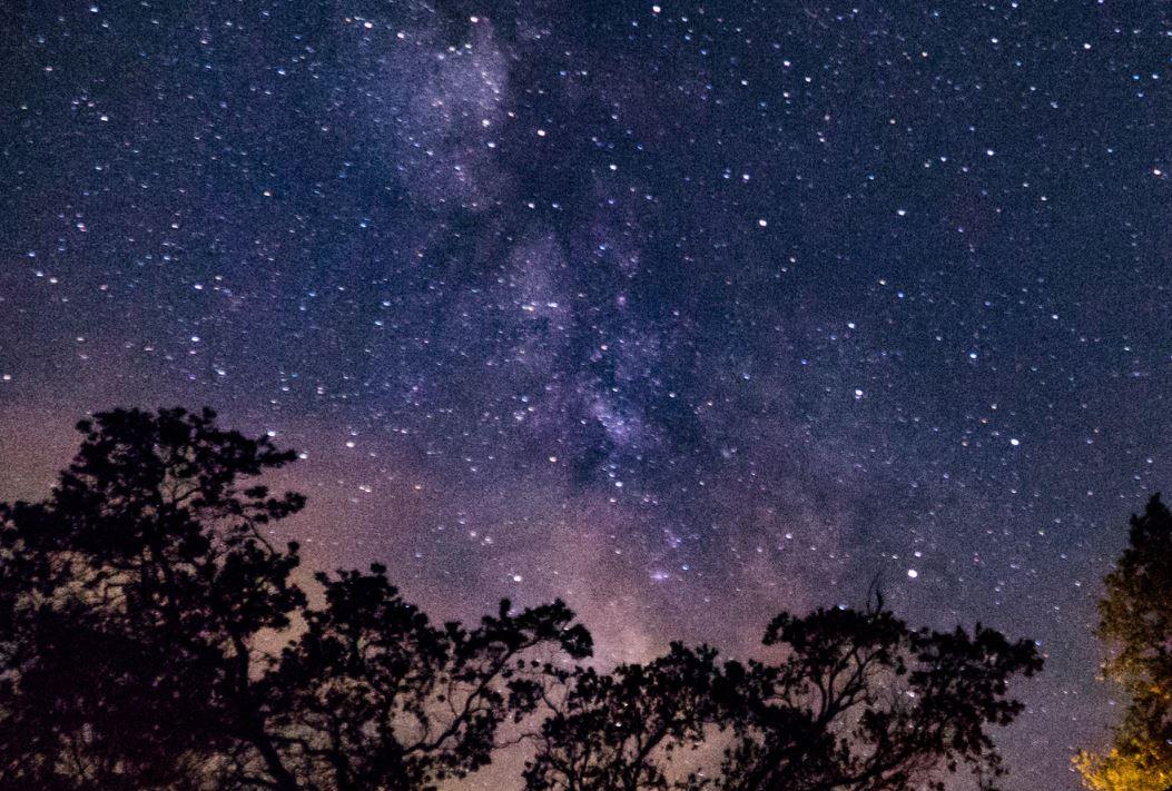 15 juli sterrenbeeld