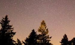 Horoscoop: 21 juli sterrenbeeld