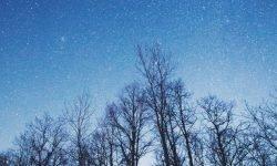 Horoscoop: 25 juli sterrenbeeld