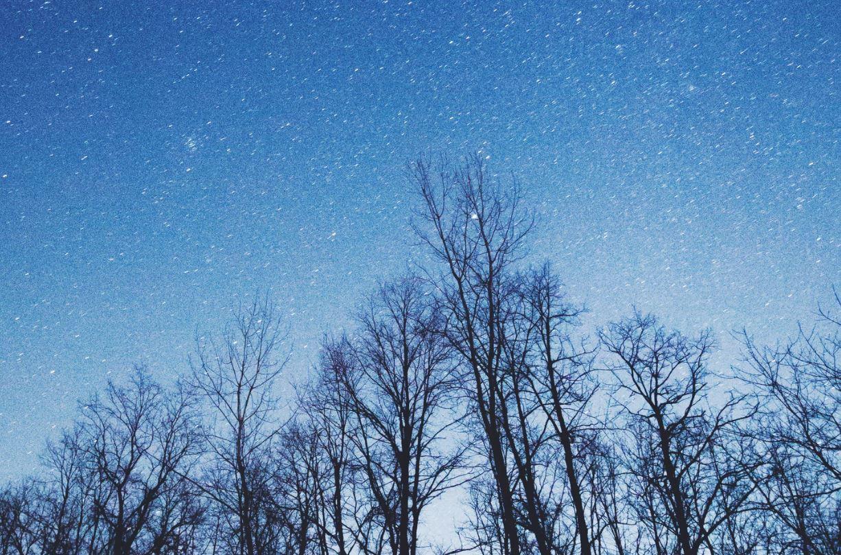 25 juli sterrenbeeld