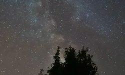 Horoscoop: 8 augustus sterrenbeeld