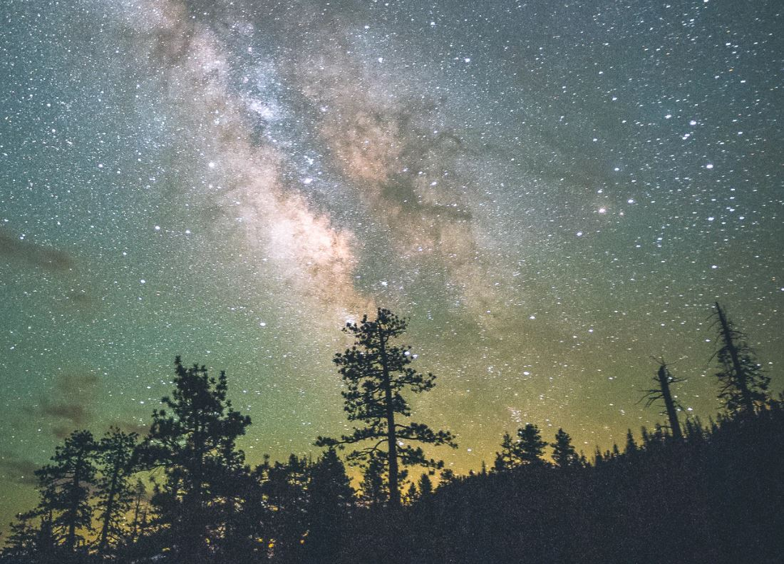9 augustus sterrenbeeld