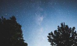 Horoscoop: 16 augustus sterrenbeeld