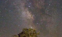 Horoscoop: 22 augustus sterrenbeeld