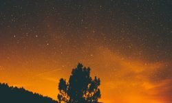 Horoscoop: 5 november sterrenbeeld