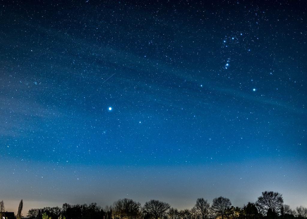 11 november sterrenbeeld