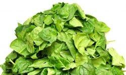 Waarom is spinazie gezond? Lees hier de 11 voordelen