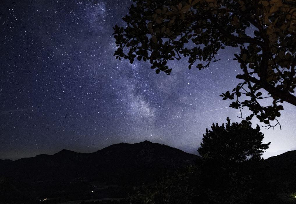 23 november sterrenbeeld