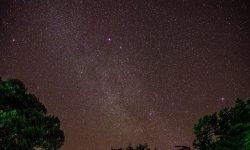 Horoscoop: 27 november sterrenbeeld